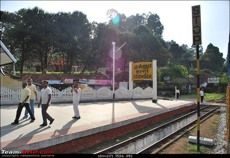 Another Trip Report to Ooty!-dsc_1625.jpg