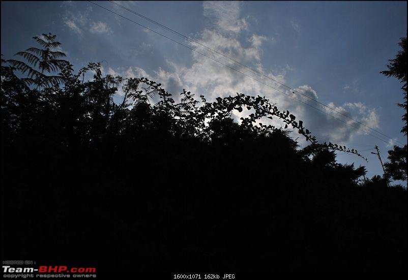 Another Trip Report to Ooty!-dsc_1630.jpg