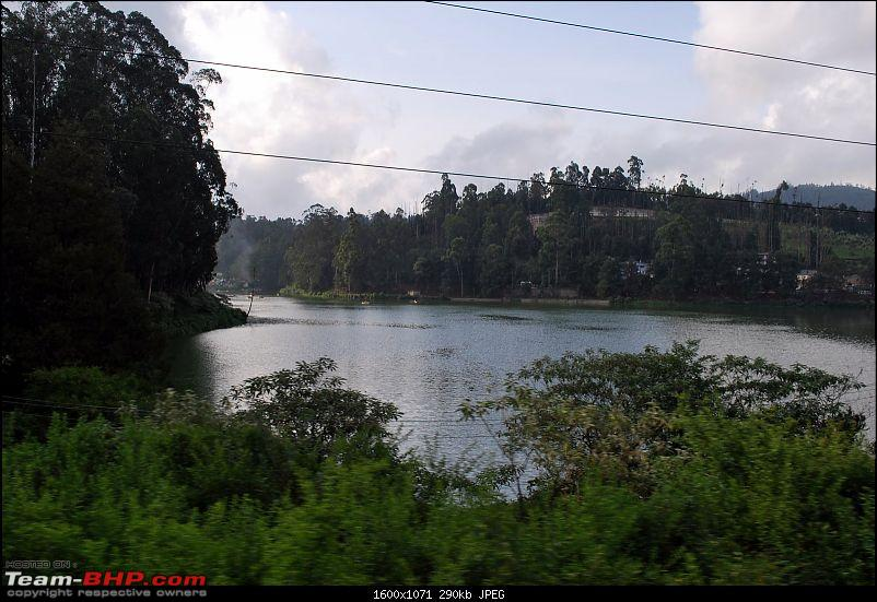 Another Trip Report to Ooty!-dsc_1704.jpg