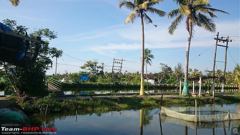 Day Trip to the Narakkal Fish Farm (Kerala)-dsc_0108.jpg