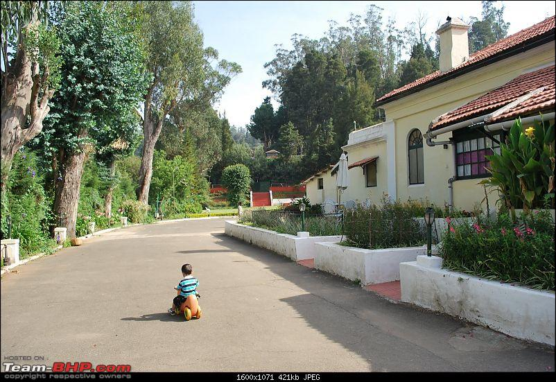 Another Trip Report to Ooty!-dsc_1783.jpg
