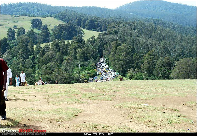 Another Trip Report to Ooty!-dsc_1806.jpg