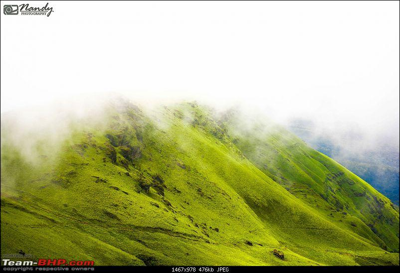 When brown turns green – Ride to Chikmagalur!-dsc_0143.jpg