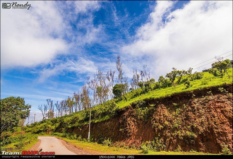 When brown turns green – Ride to Chikmagalur!-dsc_0477.jpg