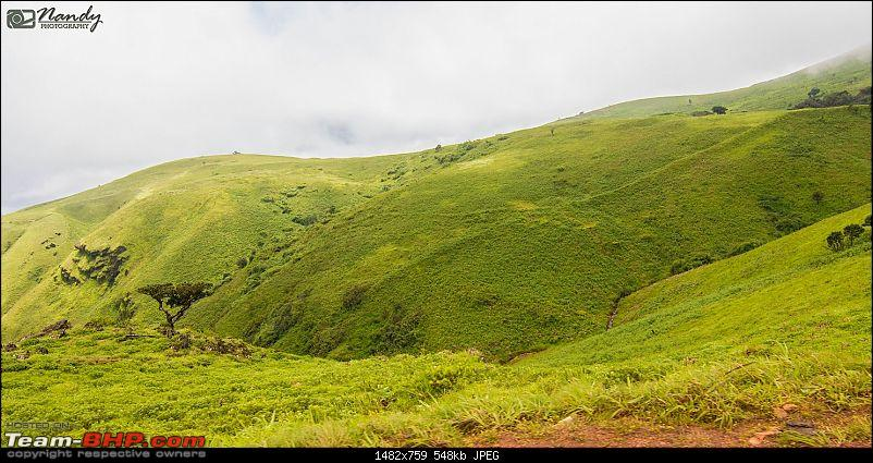 When brown turns green – Ride to Chikmagalur!-dsc_0558.jpg