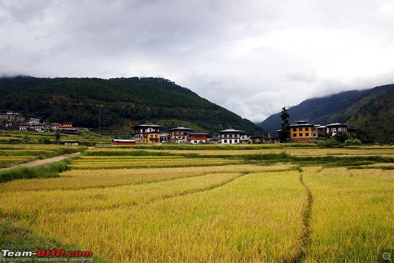 Where no Elantra has gone before - 5500 kms, 6 States & Bhutan!-punakha_02.jpg