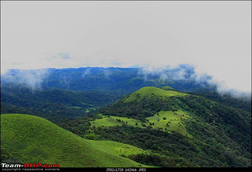 Sights of Mesmerizing Mysore and Captivating Coorg-mys_coo_0313.jpg