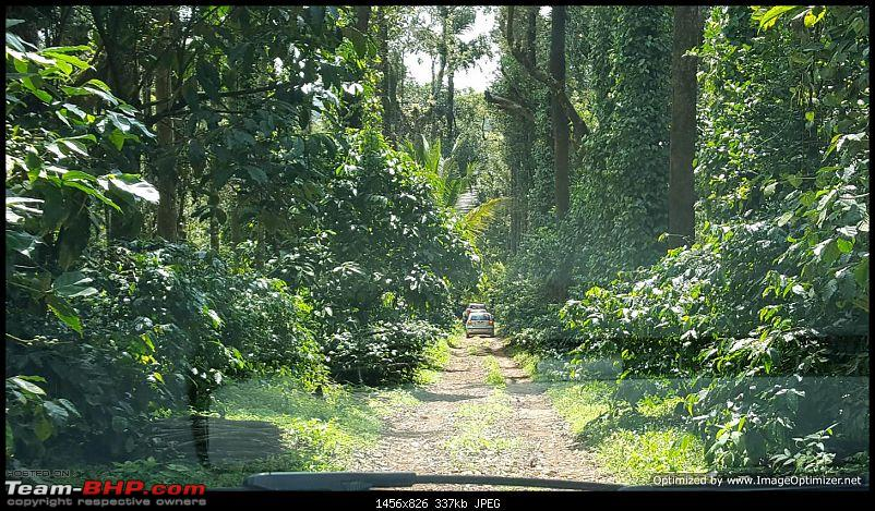 Weekend getaway to Chikmagalur and Mullayanagiri – 4 cars, 5 families and loads of fun!-14aoptimized.jpg