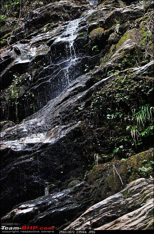 In the abode of the Himalayas - Hiking 4000 meters up to Dzongri-watertrickle_01.jpg