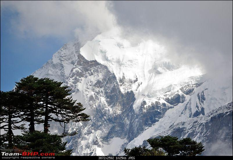 In the abode of the Himalayas - Hiking 4000 meters up to Dzongri-upclose_01.jpg