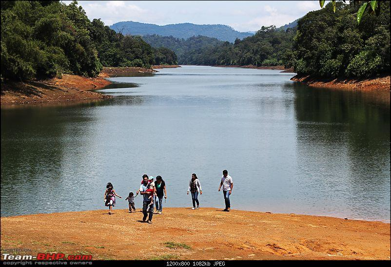 A thrilling weekend at the Manampalli Forest-1.jpg