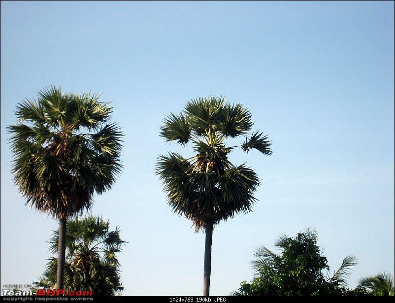 Madurai, Rameswaram & Gulf of Mannar-img_9432.jpg