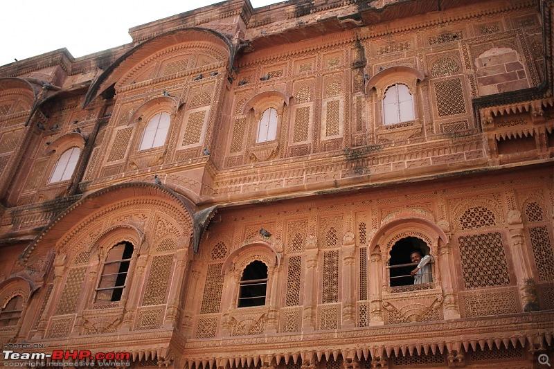 Bangalore to Rajasthan : 2 week road-trip in a Fiat Punto-dpp_1272.jpg