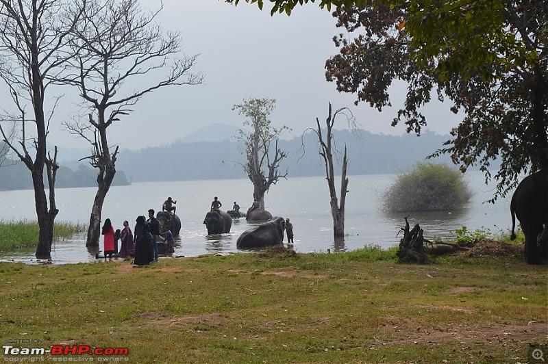 Go..Goa..Gone! Road trip from Bangalore -> Shimoga -> Goa-dsc_0205.jpg