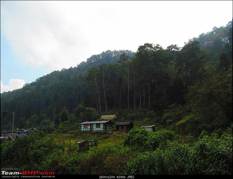 From Snarl to Old Silk Route : Rishi Khola, Gnathang, Kupup (East Sikkim) & Icchey Gaon-img_5894.jpg