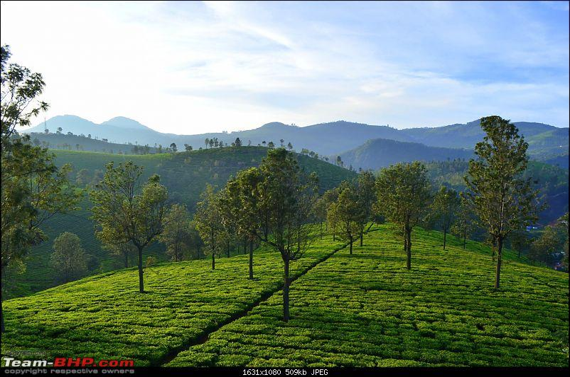 Driven: Bangalore to Calicut via Palakkad, Coimbatore, Coonoor, Ooty & Manjoor-dsc_2213.jpg