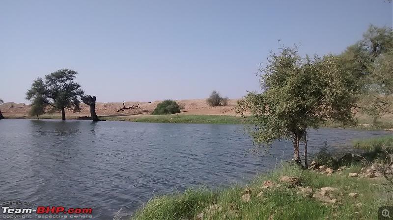 6122 kms, 6 States, 14 Days: Bangalore - Rajasthan - Agra Road Trip-001-oasis.jpg
