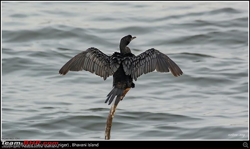 Hyderabad to Bhavani Island - A Weekend Getaway-img_4925.jpg
