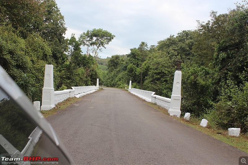 Solo 2000 km road-trip in my Jazz: Mumbai- Gokarna- Maravanthe- Jog Falls- Murudeshwar- Dandeli- Goa-jungle-drive-1.jpg