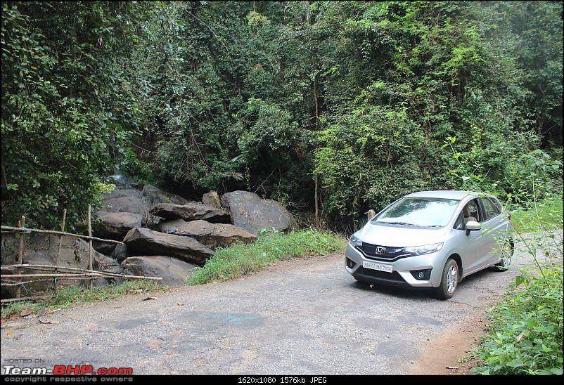 Solo 2000 km road-trip in my Jazz: Mumbai- Gokarna- Maravanthe- Jog Falls- Murudeshwar- Dandeli- Goa-next-stream-jungle-drive-4.jpg