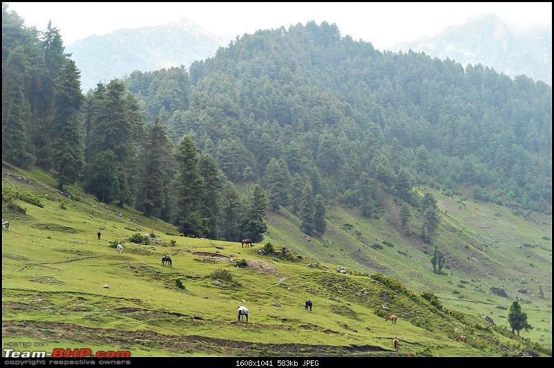 Honda City i-DTEC: 5300 kms in 13 days! A family road-trip to the Vale of Kashmir!-dscn6133.jpg