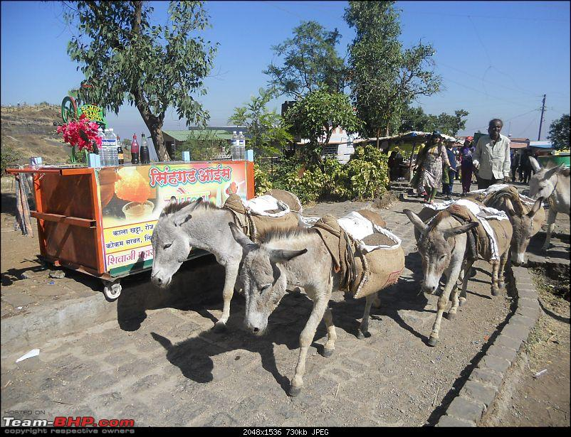 With my TUV300 to Sinhagad Fort, Balaji Temple, Narayanpur & Shivthar Ghal-09now-no-horses-only-donkey-work.jpg