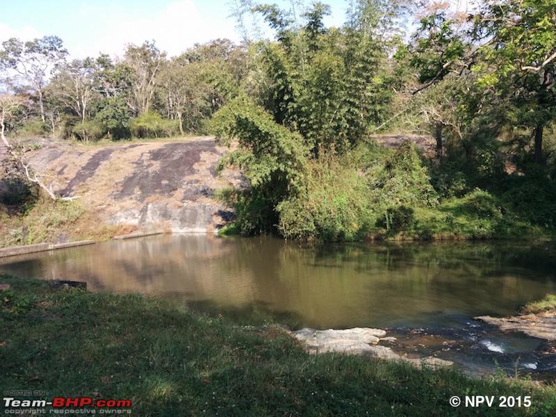 Name:  11.Pond.jpg Views: 895 Size:  278.4 KB