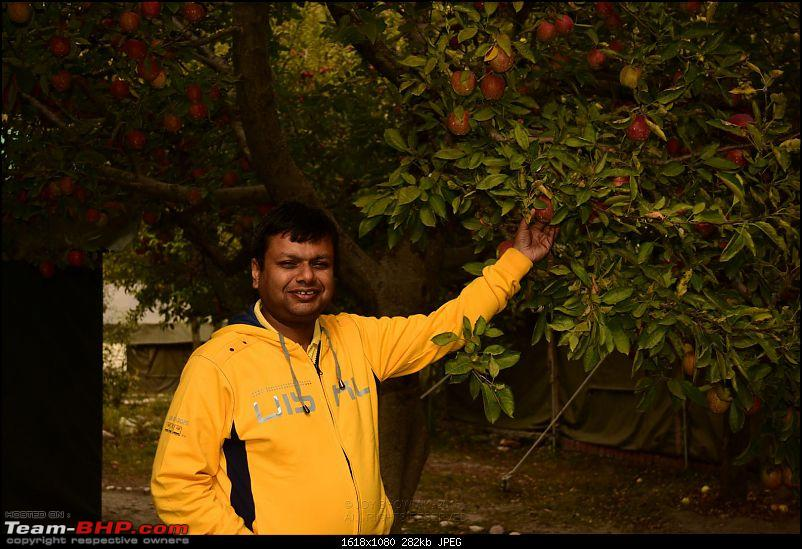 Being a bachelor again - Driving holiday with friends to Uttarkashi, Gangotri & Nelong Valley-a0288_2015102414h29m41dsc_2224.jpg