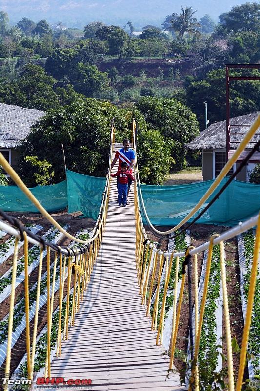 Prathamesh Farms - Great one day picnic destination from Pune-suspension_bridge.jpg