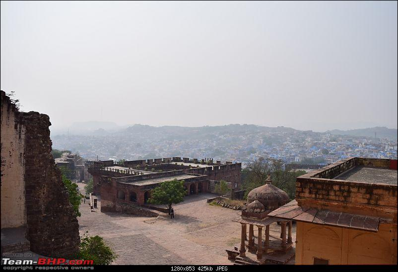 Forts, Palaces, Wildlife and more - 9,500 kms across South, West and North India-dsc_1777-1280x853.jpg