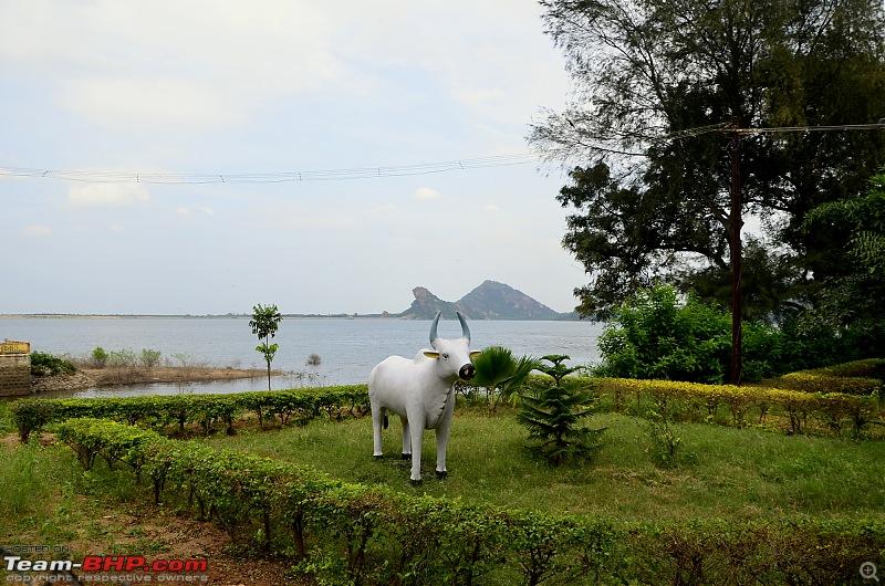 Ford Aspire visits Kerala : Traverses via a wildlife sanctuary, mountains, backwaters and a beach!-_dsc3190.jpg