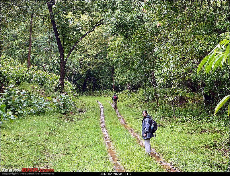 'Xing'ing around ! - A Long walk, Monsoon, Leeches, Wildlife & Railway History...-78.jpg
