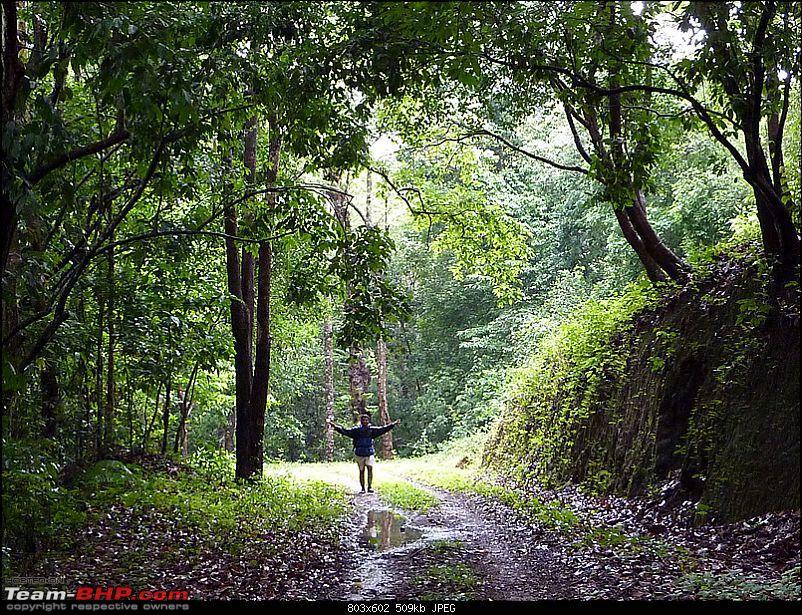 'Xing'ing around ! - A Long walk, Monsoon, Leeches, Wildlife & Railway History...-83.jpg