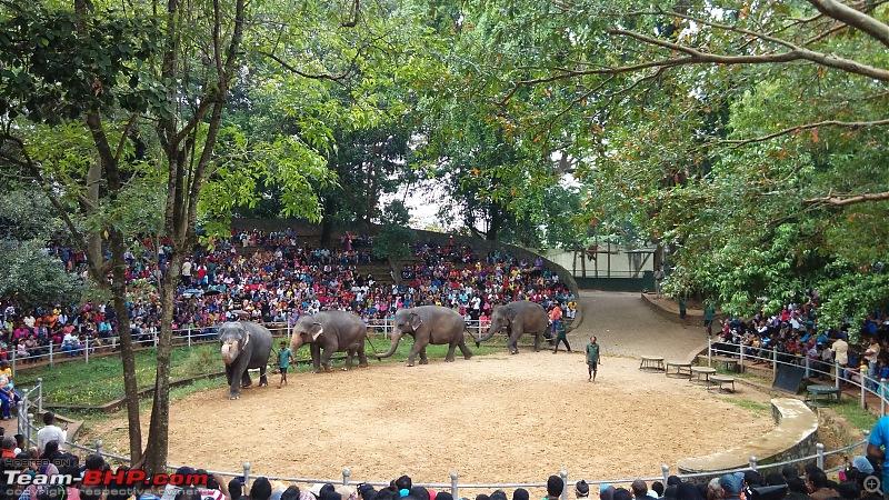 A Family Holiday in Sri Lanka-img_20151227_164542.jpg
