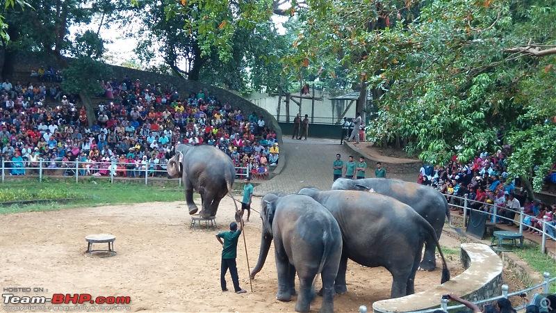 A Family Holiday in Sri Lanka-img_20151227_165031.jpg