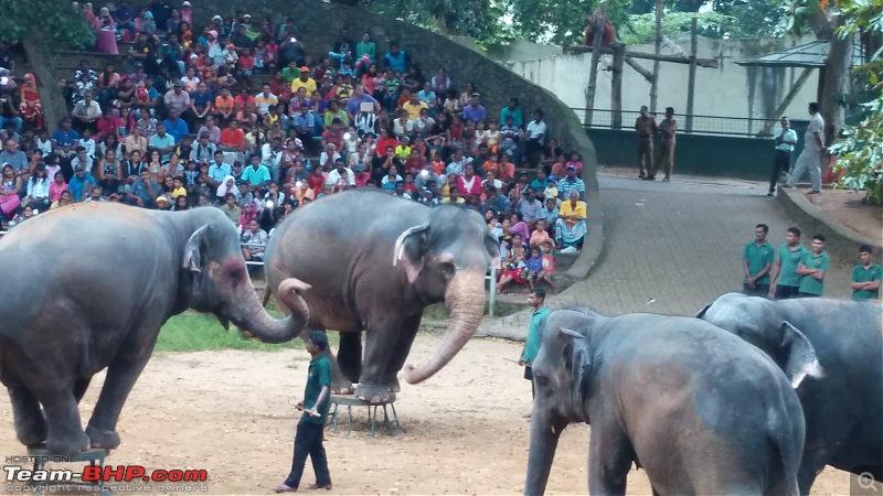 A Family Holiday in Sri Lanka-img_20151227_165144-copy.jpg