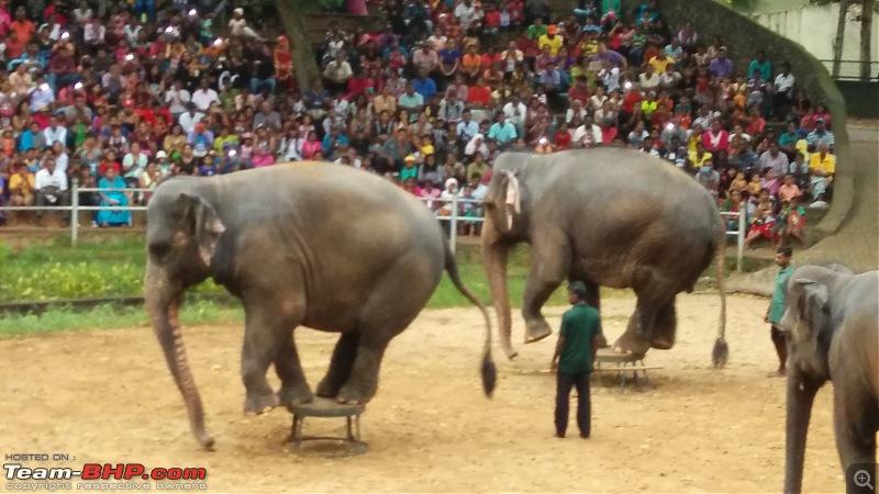 A Family Holiday in Sri Lanka-img_20151227_165204.jpg