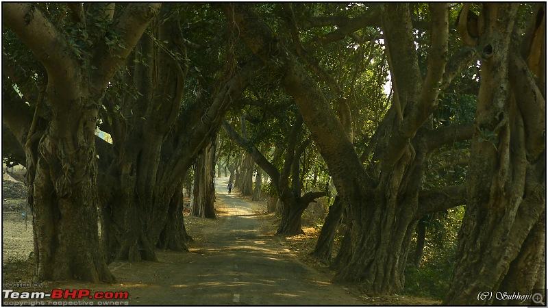 Drive to the hidden gems of Jharkhand; Kolkata to Giridih, Khandoli & Topchanchi-59.jpeg