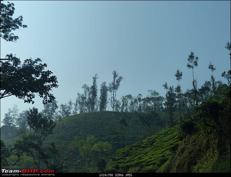 Pun-toured : The Beautiful Western Ghats-p1020690.jpg