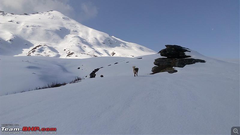 Unforgettable Winter Kedarkantha Trek / Drive to Sankri-13.jpg