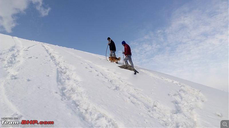 Unforgettable Winter Kedarkantha Trek / Drive to Sankri-20.jpg