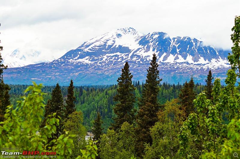 66 Degrees North: Roadtripping in Alaska-denali-park9048.jpg