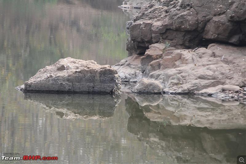 Driving through Melghat - Quickie through Seemadoh, Kolkhas & Chikhaldara-img_2707.jpg