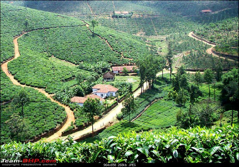 Vagamon heights - A surprise package-greenblanket.jpg