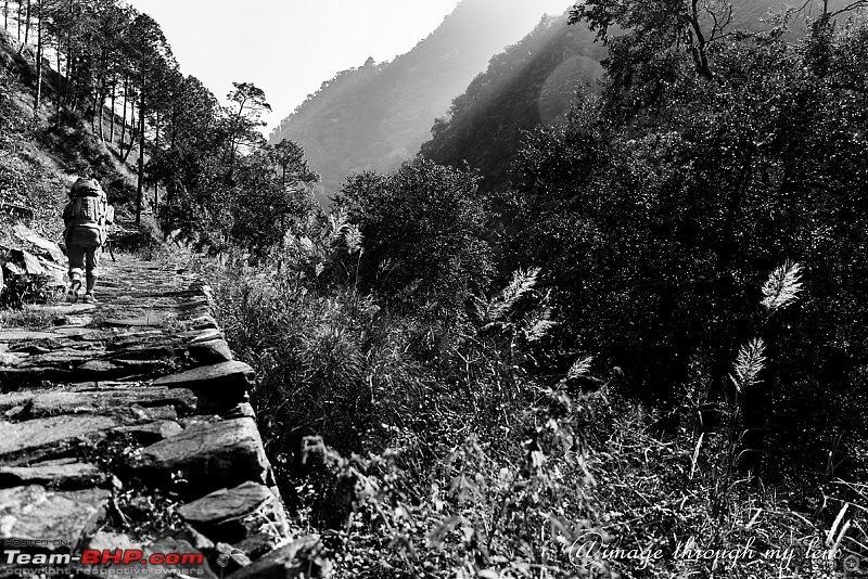 Nandikund Trek: Quest through the Garhwal Himalayas-gaundaar-1001.jpg