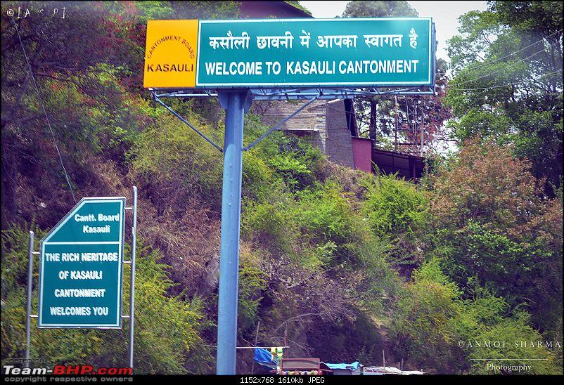 Photologue - A Drive to Kasauli, a drive to remember!-dsc_0439.jpg