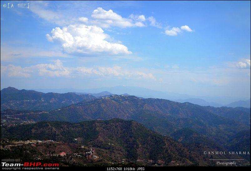 Photologue - A Drive to Kasauli, a drive to remember!-dsc_0460.jpg
