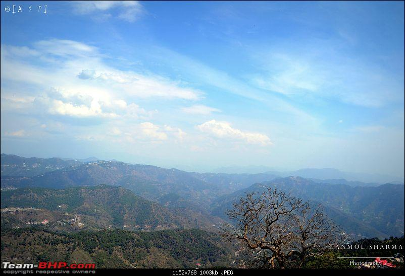 Photologue - A Drive to Kasauli, a drive to remember!-dsc_0466.jpg