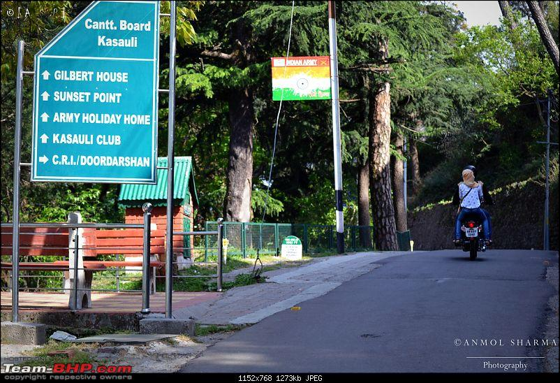 Photologue - A Drive to Kasauli, a drive to remember!-dsc_0564.jpg