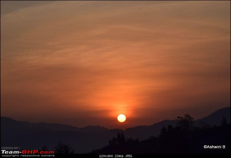 Dwarfing along - Dreaming of the hills (Ooty)-t18.jpg
